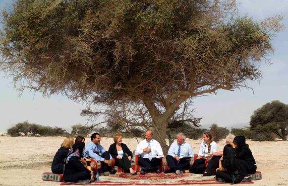 Sidra boom Qatar inspiratie voor QNCC