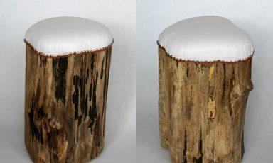 Het unieke boomstronk krukje!