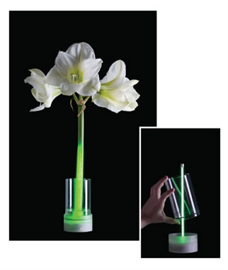 Living Light  van ontwerper Floris Wubben