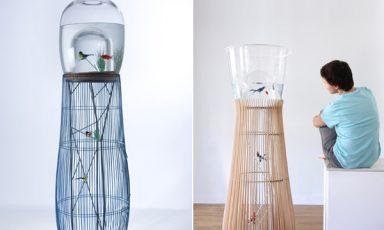 Vogelvissenkooikom