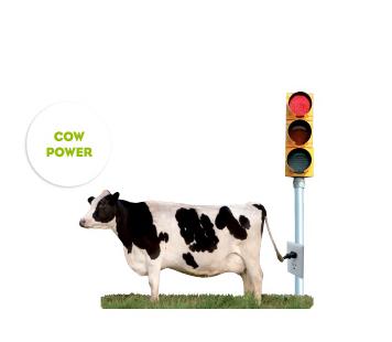 State of Design Festival Melbourne koe geeft stroom aan stoplicht
