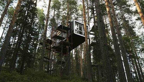 Het Treehotel in de bossen van Zweden