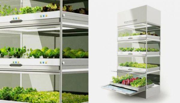 Klimaatkast Kitchen Garden Nano maakt indoor tuinieren en groente kweken mogelijk