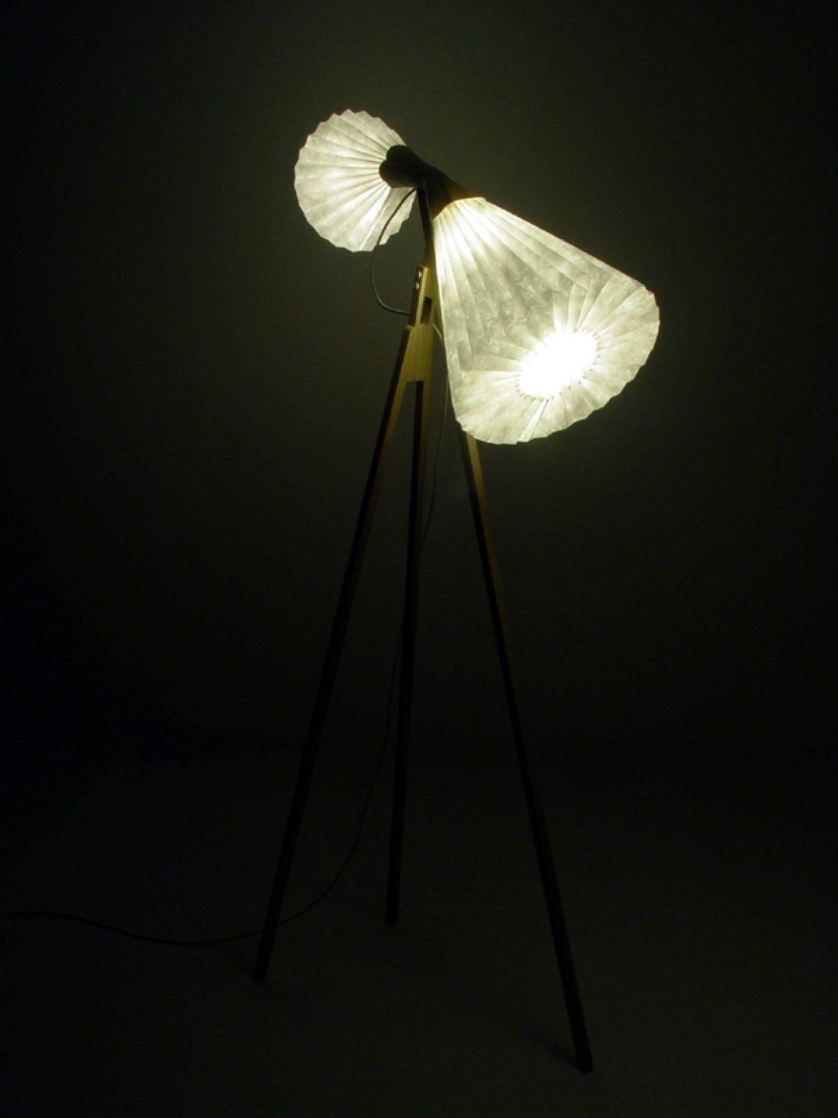 Lichtgevende zwanen