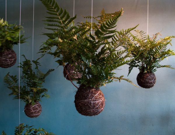 Tuin aan een touwtje gimmii dutch design - String kantoor ...