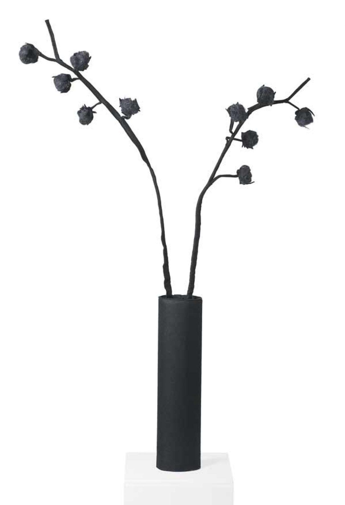 Viltplanten van Wandschappen