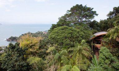 Braziliaans bos-beachhouse