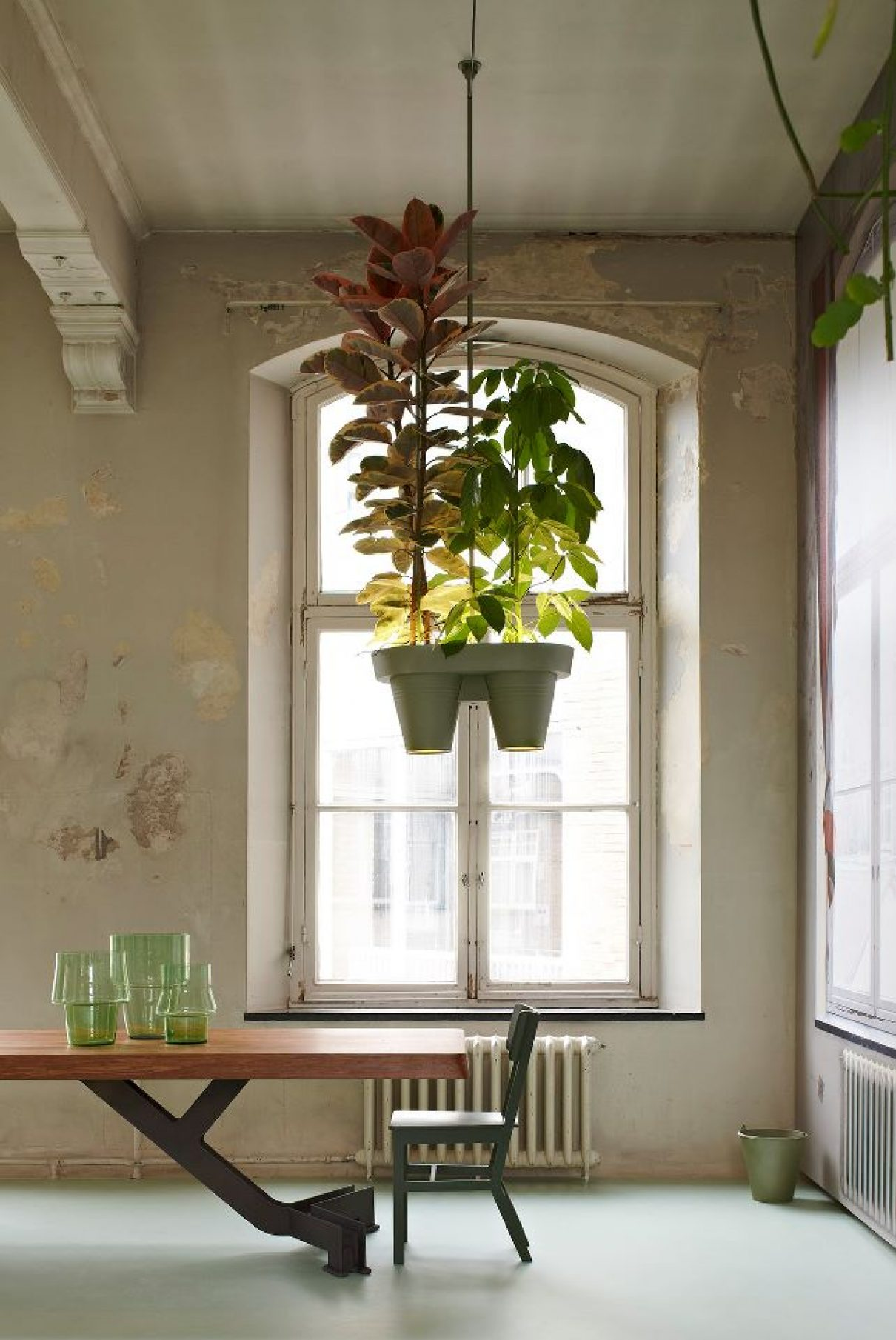 Botanic Bucket Light