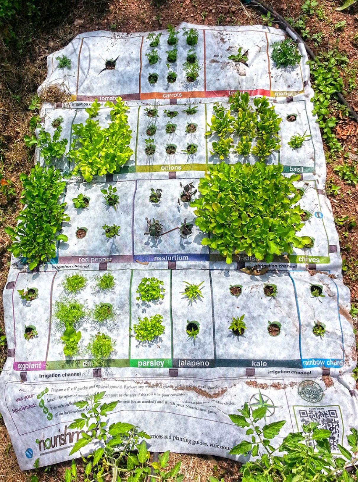 De uitrolbare tuin