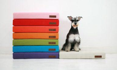 Stijlvolle hondenbedden
