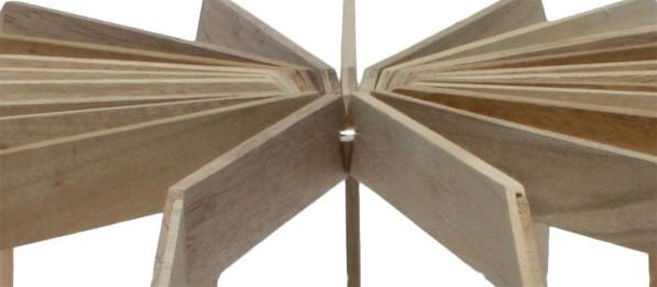 Fruitschaal SCALE detail 03 hout - Josje Schut
