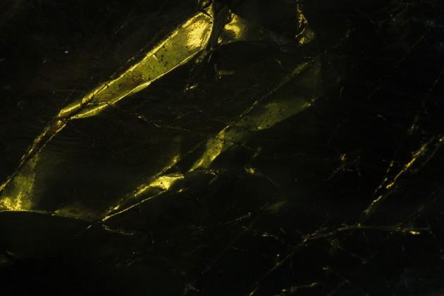 detail limber gem 6 Pleunie Buyink