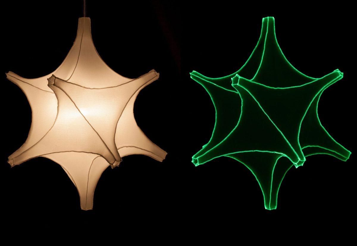 Radiolaria –  Astrosphera spicula