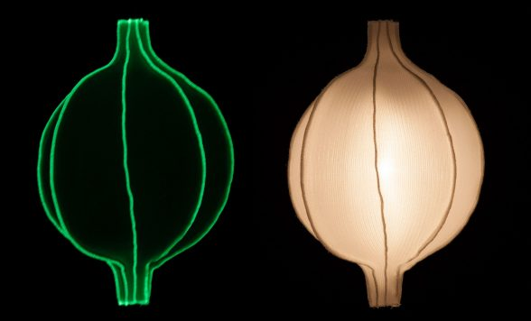 Radiolaria hanglamp –  Discomedusa infans