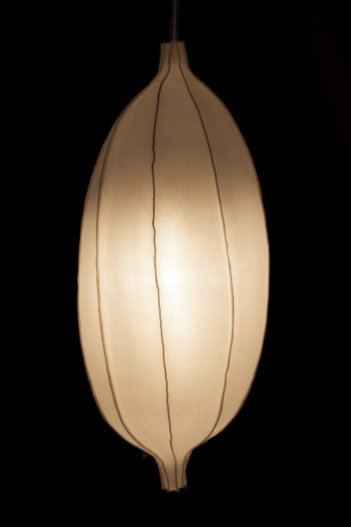 Radiolaria Discomedusa adulta hanglamp van Bernotat