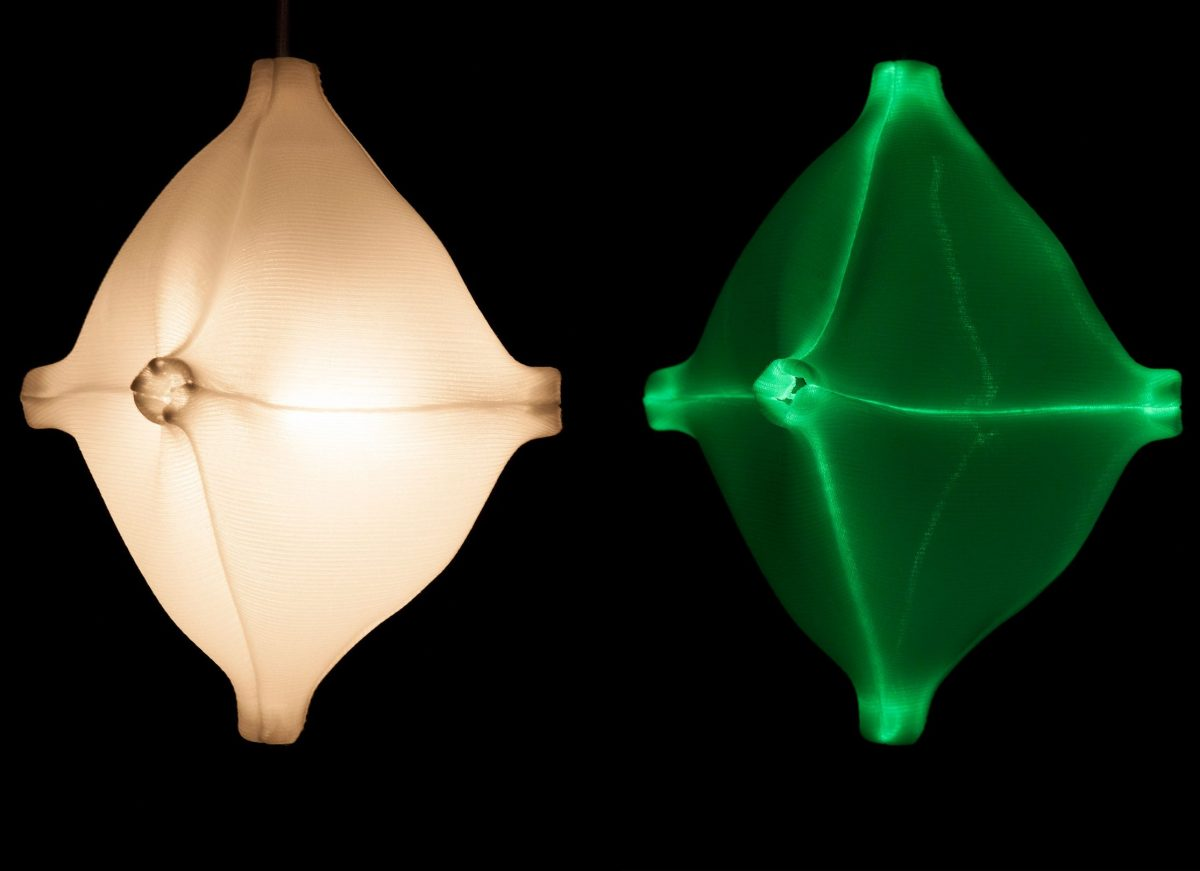Radiolaria –  Hexapodus inflatus