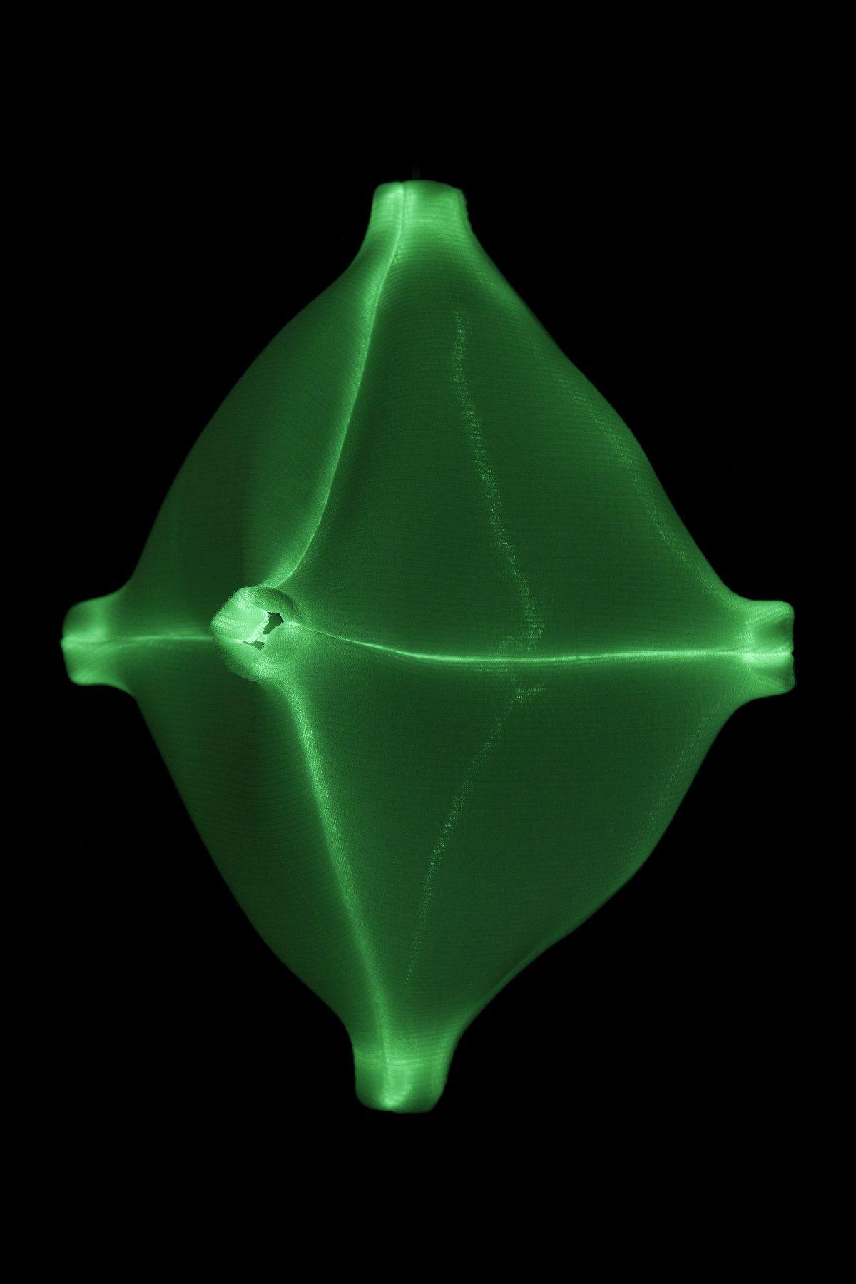 Radiolaria Hexapodus inflatus glow-in-the-dark hanglamp van Bernotat