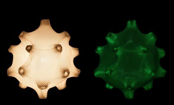 Radiolaria – Tentaculus minimus