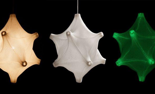 Radiolaria –  Astrosphera curvata