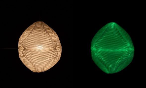 Radiolaria – Ovulus coralli hanglamp