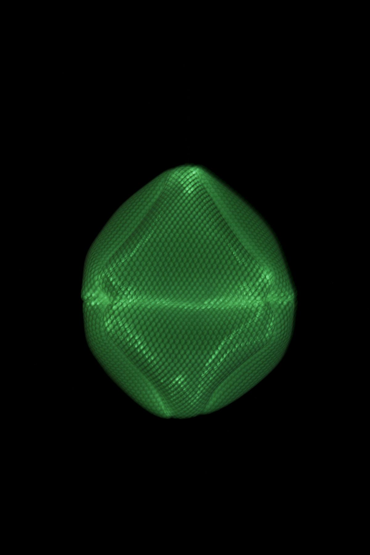 Radiolaria Ovulus Coralli glow-in-the-dark hanglamp van Bernotat