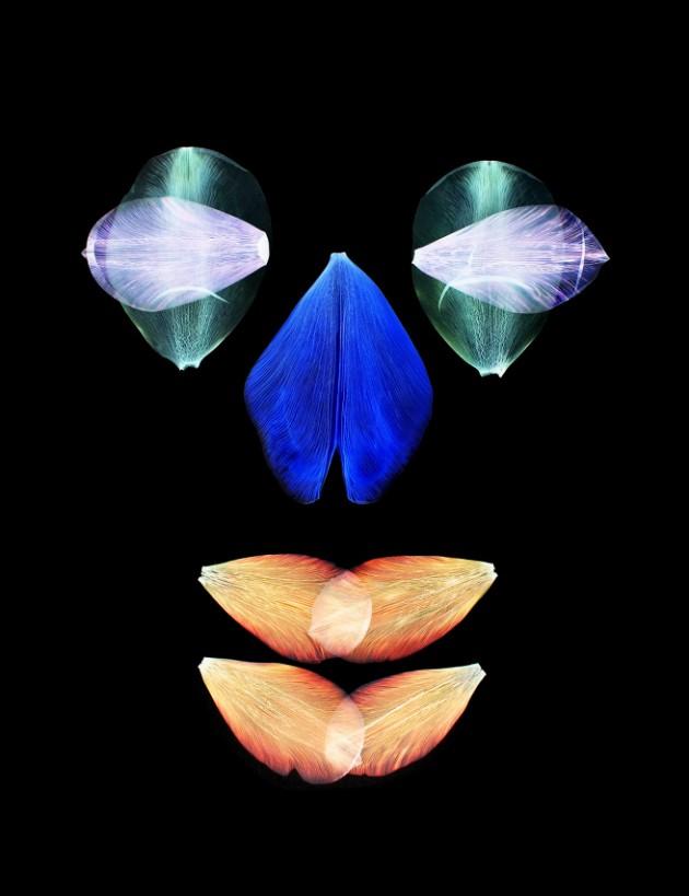 Tulip-Mania-Hilde-Koenders
