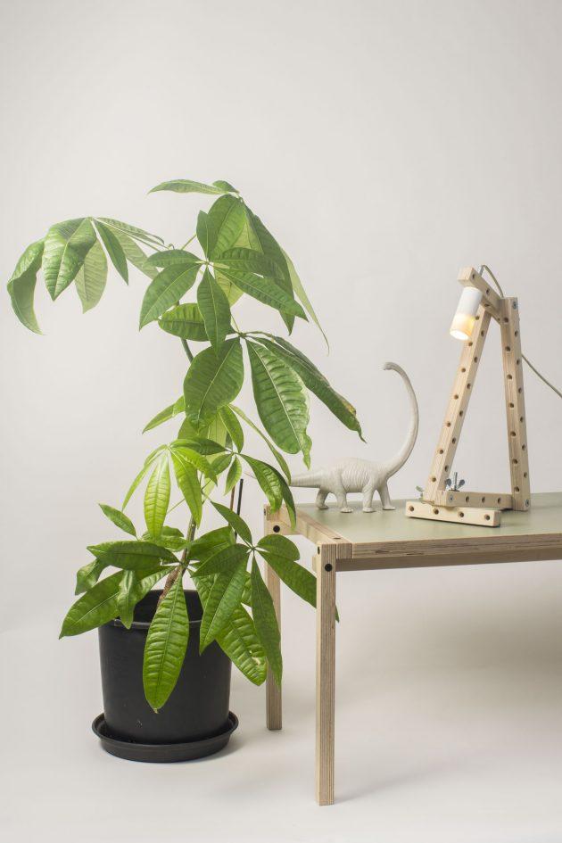 Arend Groosman 24mm Transformable LAMP BUIS SFEER