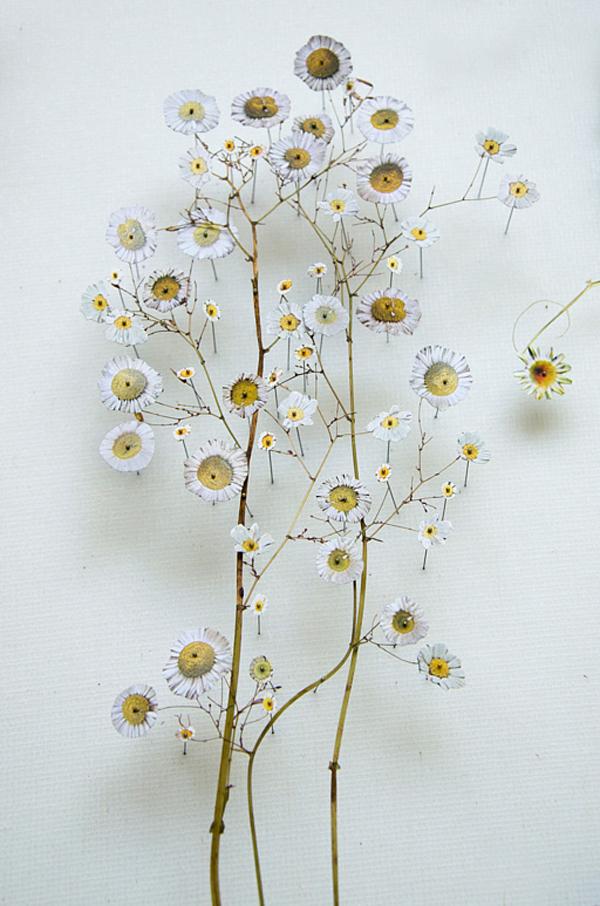 154-flower_construction_#51_02