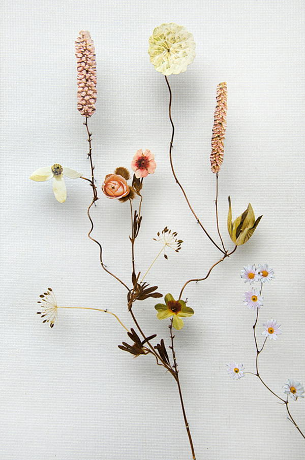 179-flower_construction_#64_02
