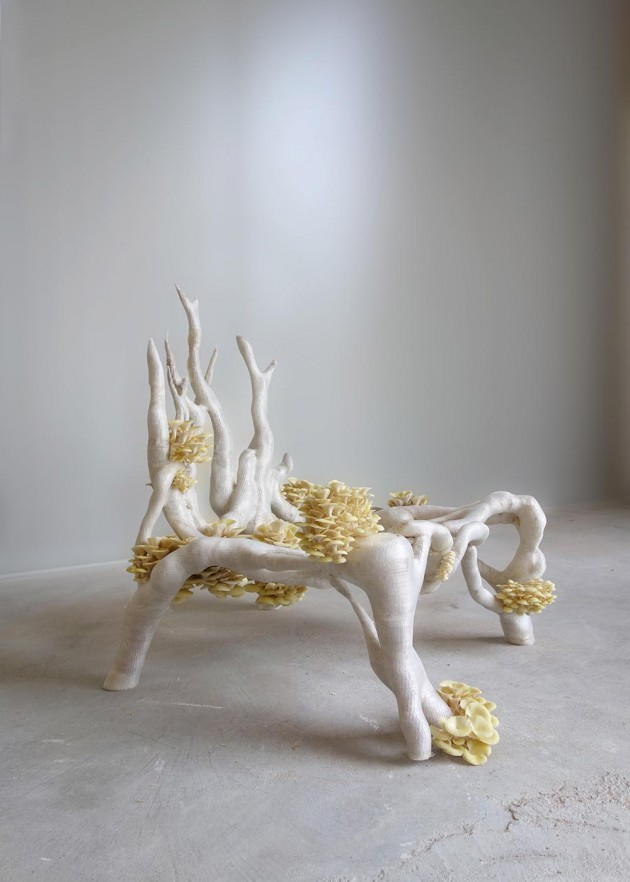 Studio Eric Klarenbeek Mycelium Project Mycelium Chair hands off dutch design
