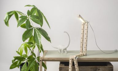 Fun met de 24mm Transformable lamp