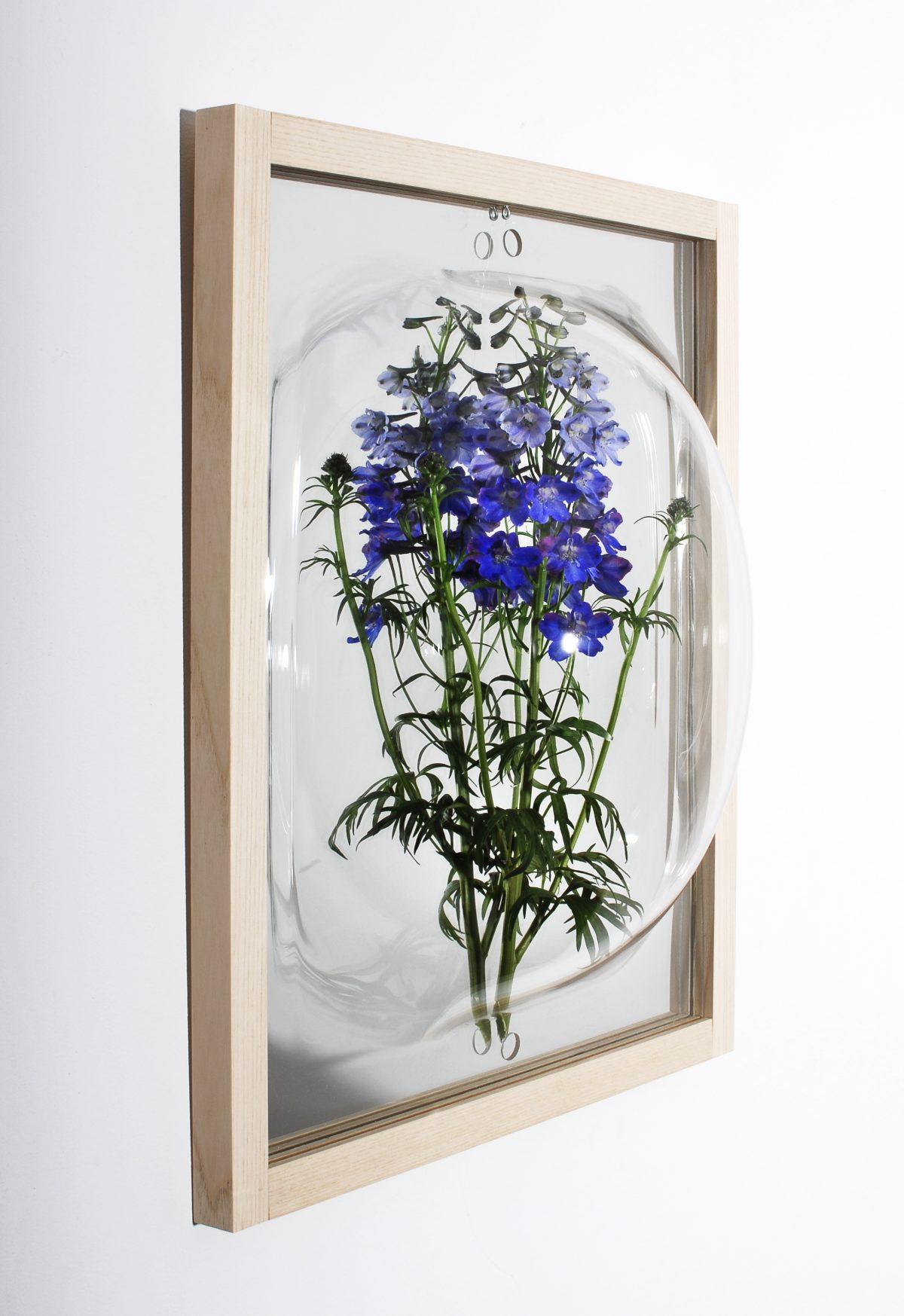 Curator Cabinet Showcase Mirror Blue Flower Studio Thier VanDaalen Gimmii Shop Dutch Design