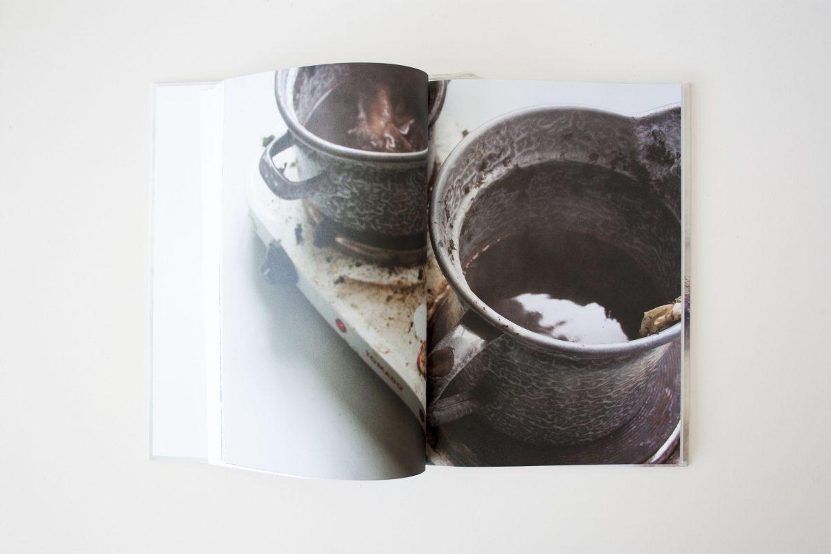Seaweed Research Book Nienkehoogvliet Zeewier Boek Gimmiishop