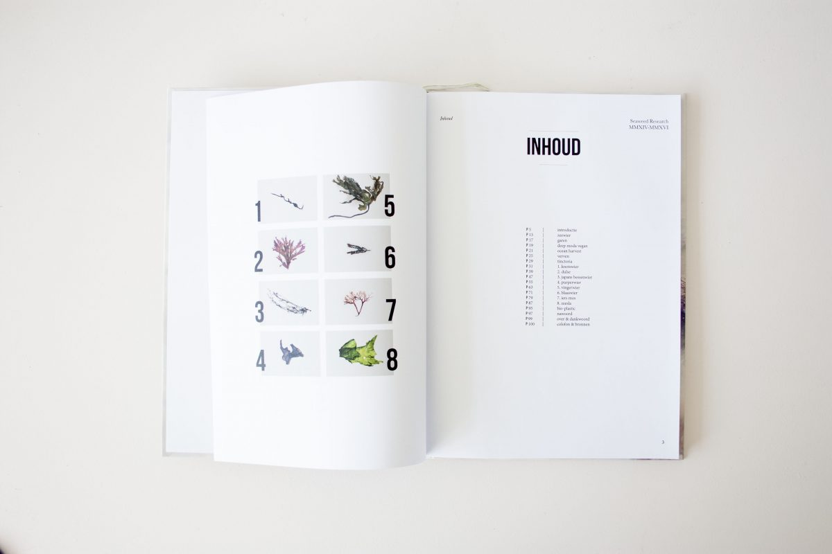 Zeewier Boek Seaweed Research Book Nienkehoogvliet Gimmiishopg