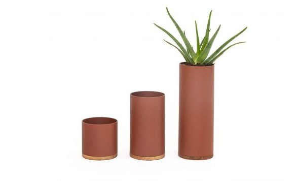 Plant Collector (Small/Medium/Large)